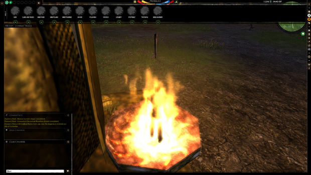 Darkfall: Unholy Wars Skills