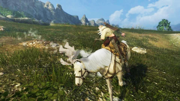 Black Desert Mounted Combat