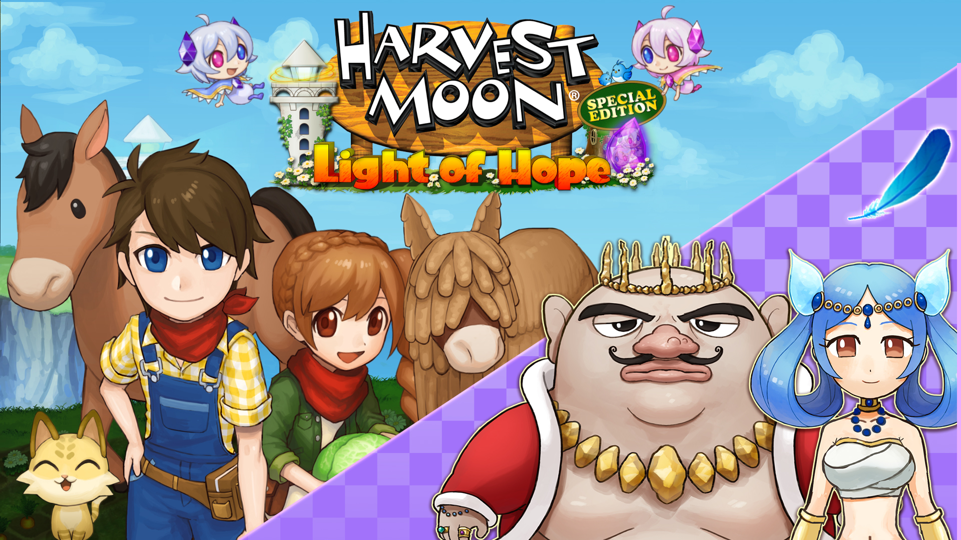 Harvest Moon Marriage DLC